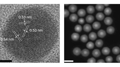 Light-Emitting Nanoparticles Could Provide a Safer Way to Image Living Cells