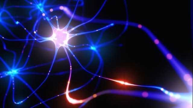 Developing Neuroprotective Therapies: Defending the Nervous System from Damage