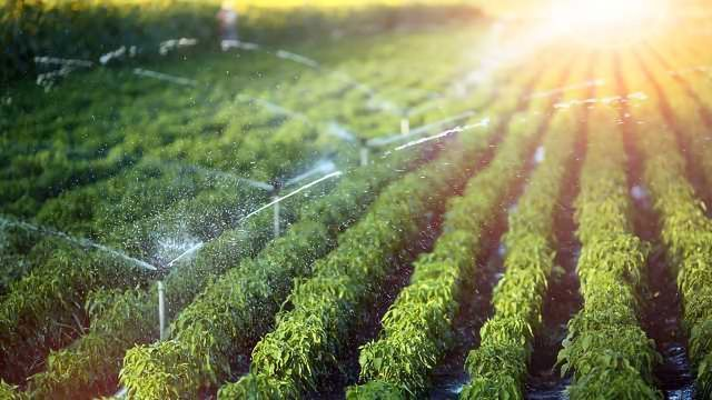 The Agricultural Perspective on Water Contamination by Pharmaceuticals