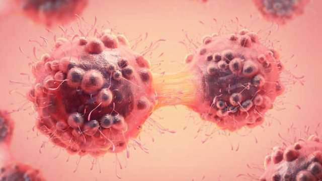 Sprouty 1 and Sprouty 2 Offer Potential to Combat Cancer