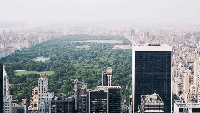 Living Close to Urban Green Spaces Linked with a Decreased Breast Cancer Risk