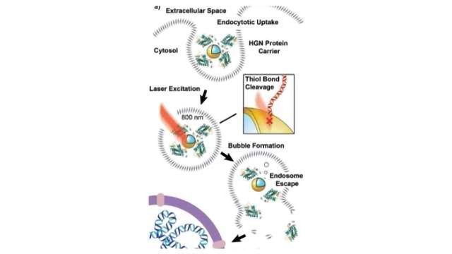 Shining a Light on Photosensitive CRISPR