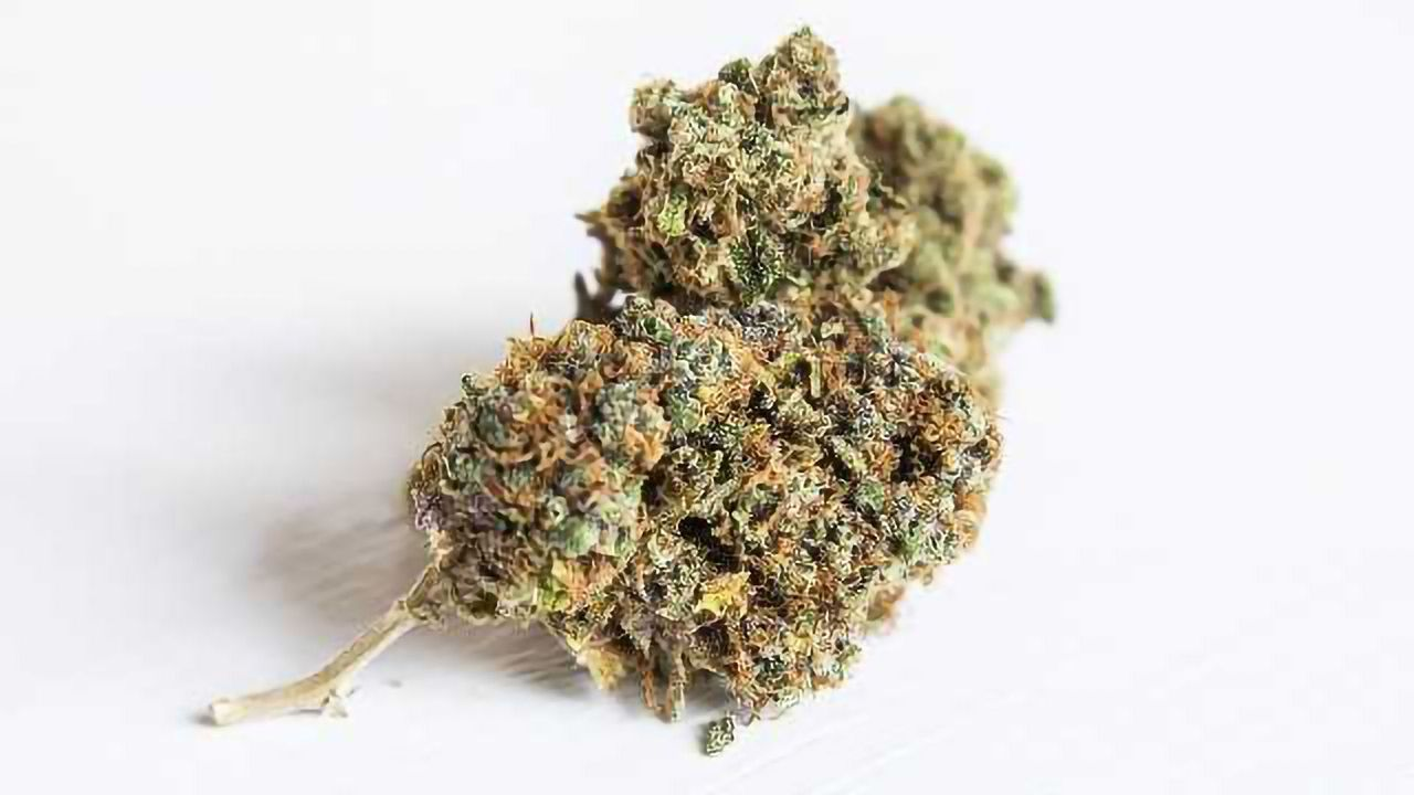 Scientists Identify 35 Genes Associated with Cannabis Use