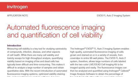 Automated Fluorescence Quantification of Cell Viability