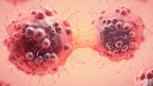 Unlocking the Secrets of Cell Division in Cancer