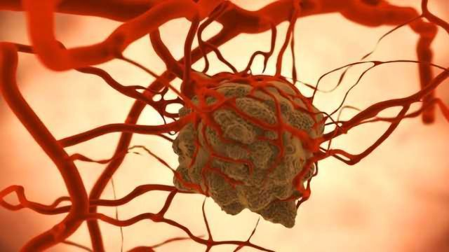 Nearby Cells Shield Tumor Cells from Targeted Therapy