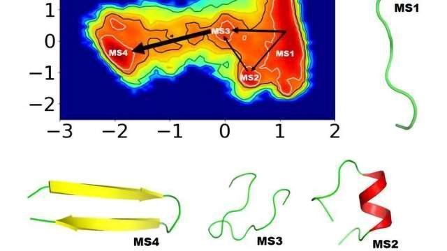 Improved Insights into Protein Folding