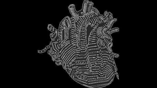 Certain Circulating Lipids Indicate a Failing Heart