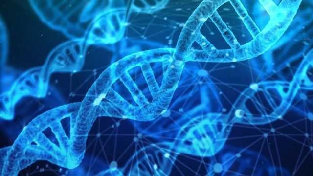 How Our Immune System Detects Broken DNA