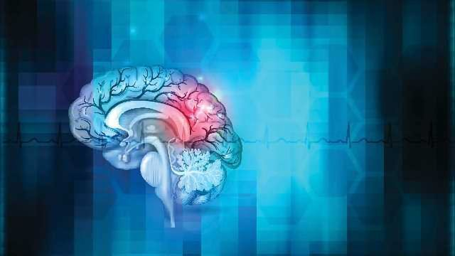 The Brain Bounces Back: Activity enables mice to overcome brain damage