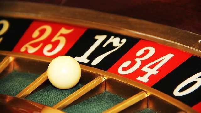 Gambling Monkeys Illuminate Risk-Taking Brain Area