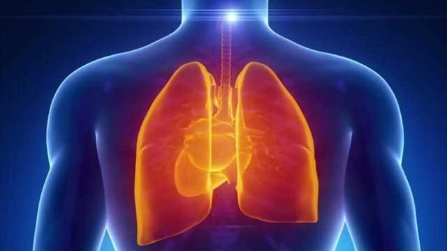 Computational Models of the Human Lung: Potential for Personalized Medicine & Inhalation Toxicology