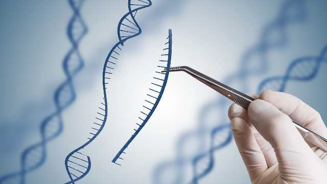 Decoding the Structure of an RNA-Based CRISPR System