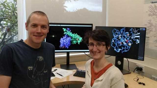 DNA-Packaging Proteins and Cancer Development Linked