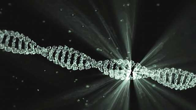 Synthetic DNA Vaccine Shows Promise for Cancer Immunotherapy