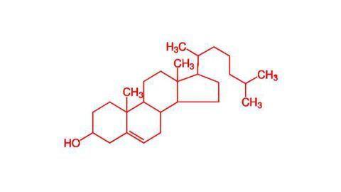 Gene Mutation Improves Cholesterol Profile