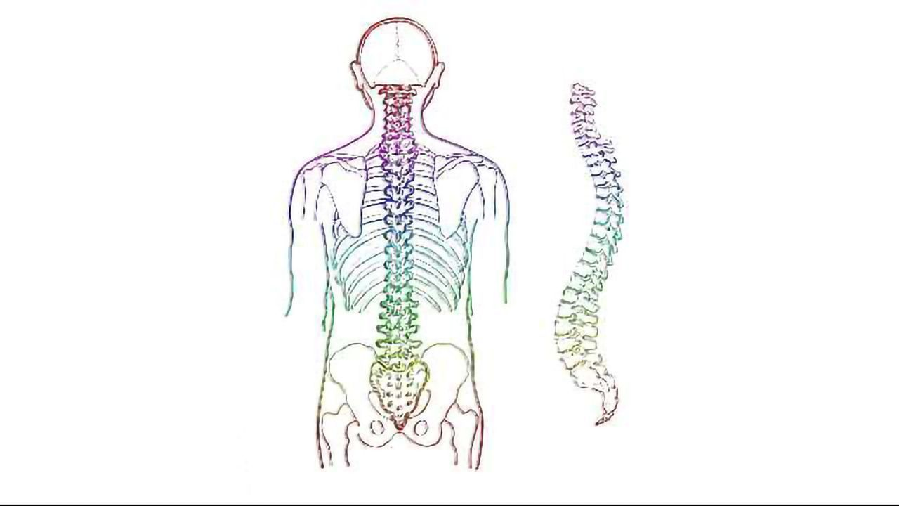 Gene Signature Could Predict Recovery After Spinal Cord Injury