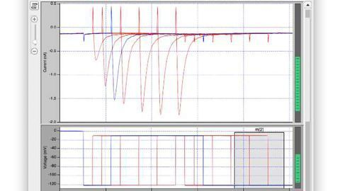 Electrophysiology Goes Digital