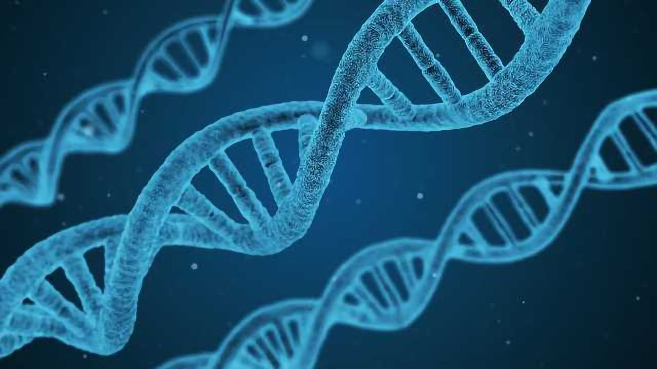 Tracking Down Missing-in-Action Multiple Sclerosis Genes