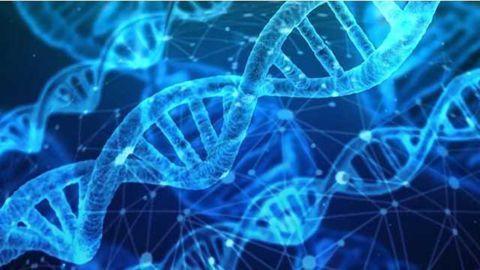 Epigenetic Drug Strategy to Treat Cancer