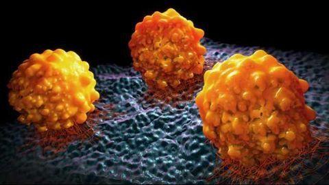 Novel Conjugates: Flexible, Stable & Potent Against Cancer