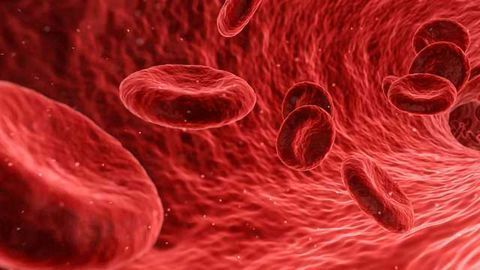 Detecting Plaque Formation by Tracking Vascular Muscle Cell Activity