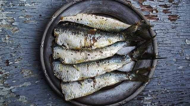 Children with Asthma Benefit from Fish-Rich Diet