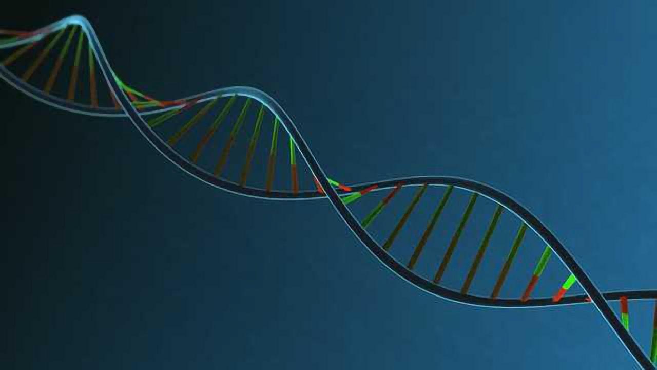 DefiniGEN Licenses CRISPR-Cas9 Gene Editing Technology from Broad Institute
