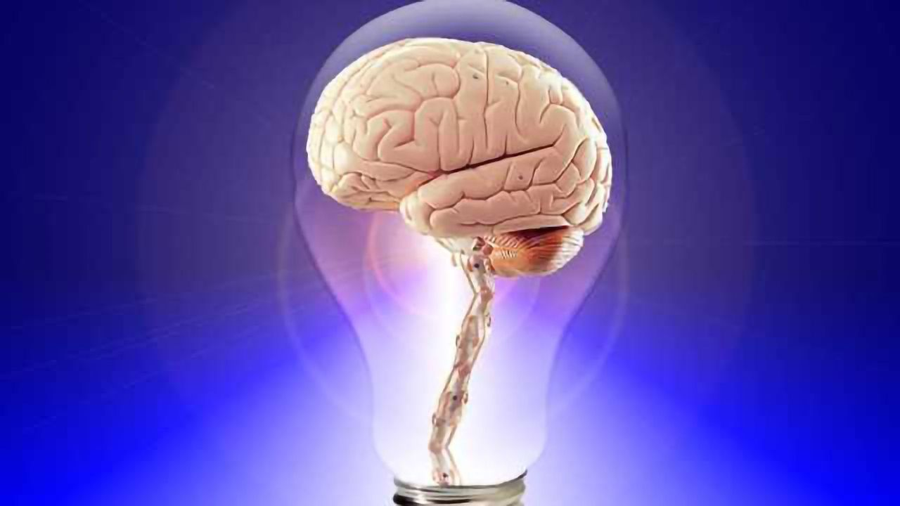 Navigating our Thoughts: Fundamental Principles of Thinking