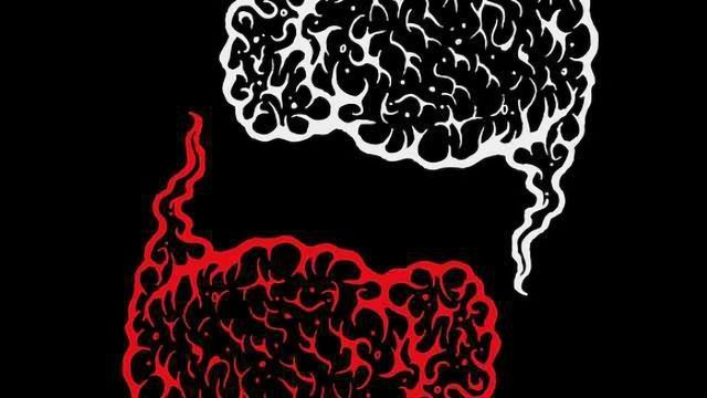 In Live Brain Function, Researchers are Finally Seeing Red