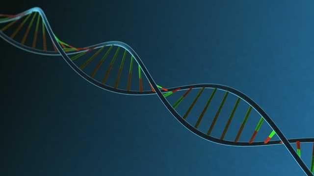 LGC Announces New, Integrated, Global Portfolio Brand, Biosearch Technologies