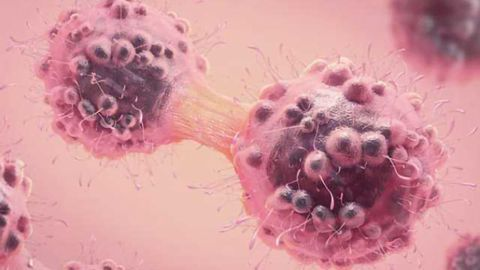 Researchers Identify Mechanism That Fuels Cancer Cells' Growth