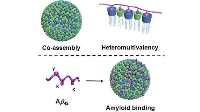 New Method for Selective Binding of Proteins