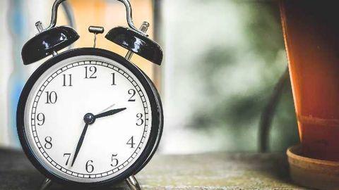 The Brain's Two Clocks