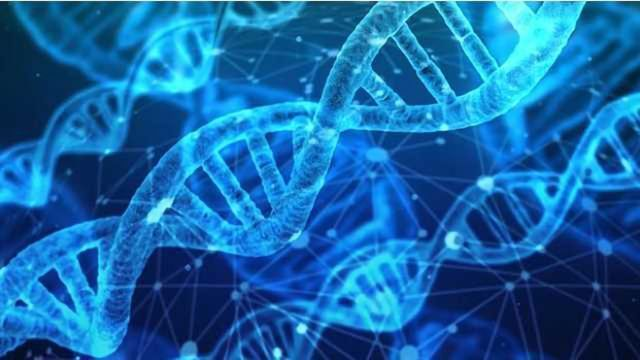 Gene Discovery Could Shed Light on Chemical Exposure Effects in Humans