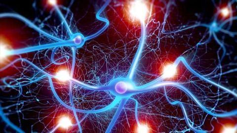 Is Targeting the Inflammasome a Way Forward for Neuroscience Drug Discovery?
