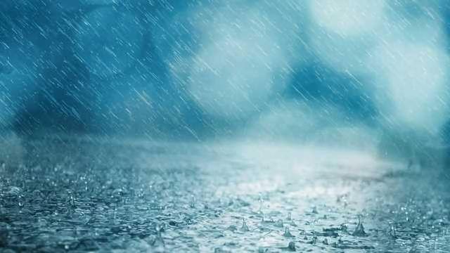 Fertilizer Fuels Rain's Infectious Cargo
