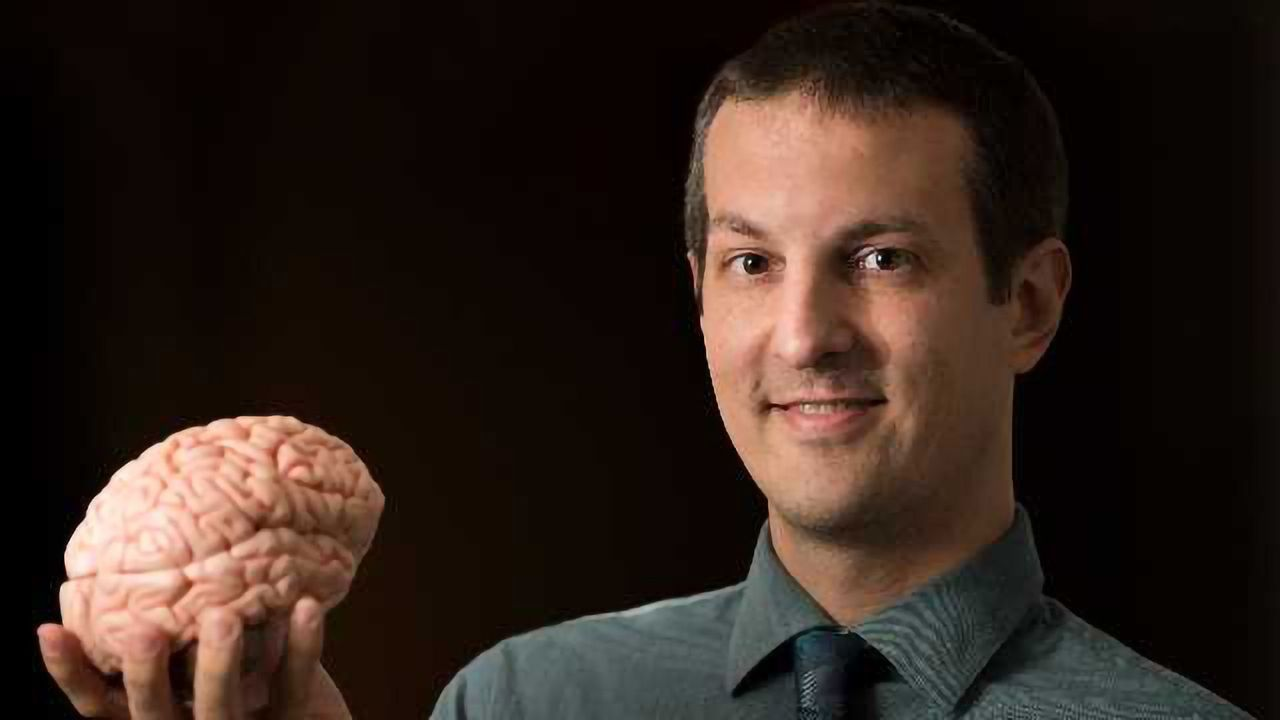 Findings Rewrite the Thalamus's Role in Consciousness