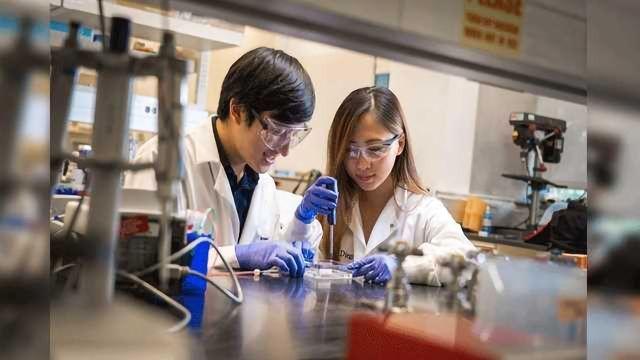 Life-like Tissues 3D Printed for Drug Screening and Ex Vivo Studies