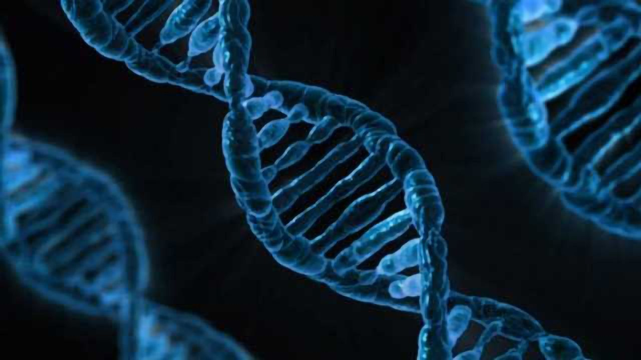 40 New Genetic Variants Linked to Colorectal Cancer Risk