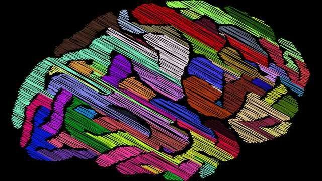 Altered Progenitor Cell Signaling Linked to Autism
