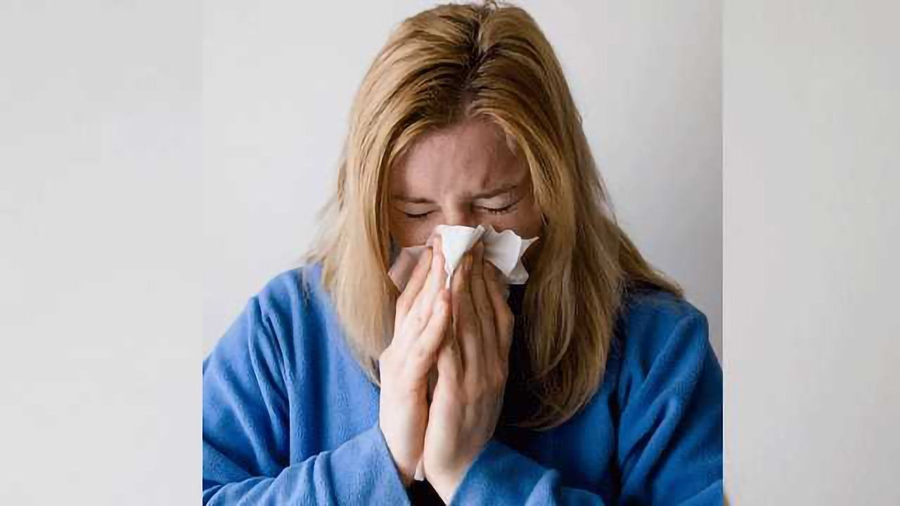 Real-time Flu Tracker Website Launched