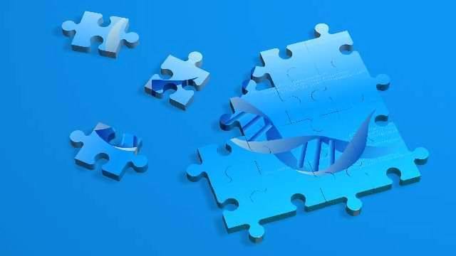 Assembling the Pieces of the Genomic Puzzle