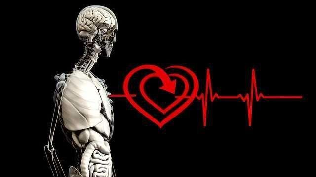 Macrophages Important for Mending a Broken Heart