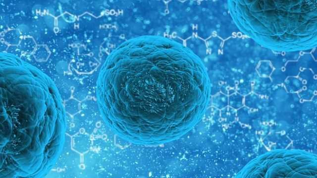 Cancer Cells Steer a Jagged Path