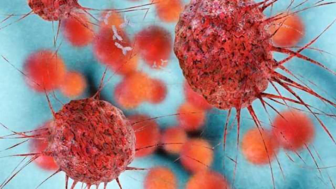 Detect & Destroy: Activating the Immune System Against Cancer