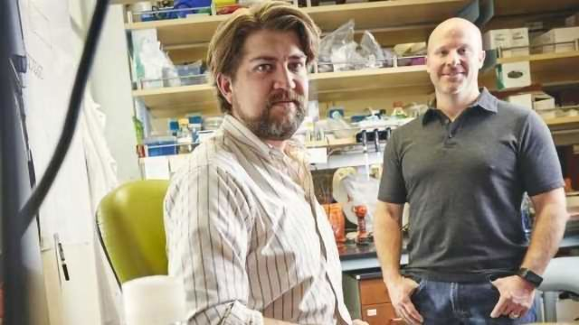 Gut Microbiome Protects Against Acute Arsenic Toxicity