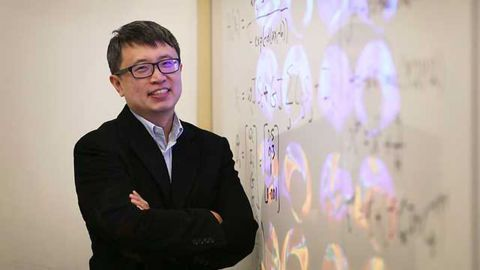 Machine Learning Uncovers New Insights into the Human Brain