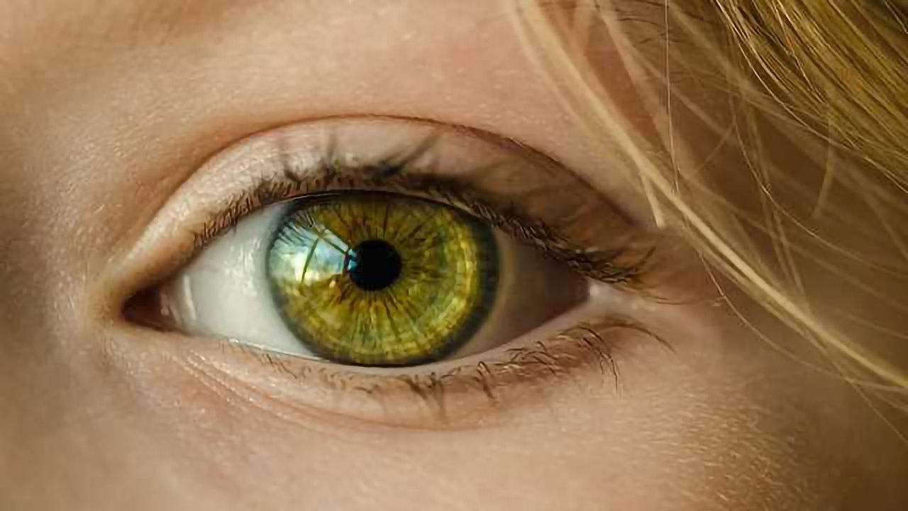 A Novel Therapeutic Target for Retinal Vein Occlusion