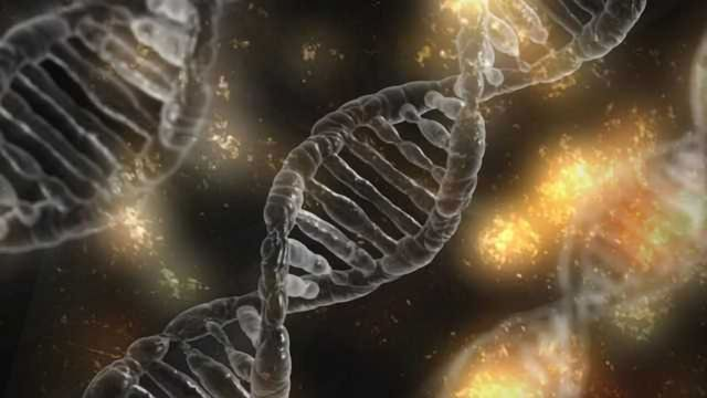 Geographic Origin of Genes May Influence Mitochondrial Function
